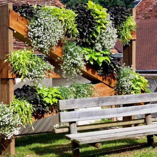 Tallenay mur végétal