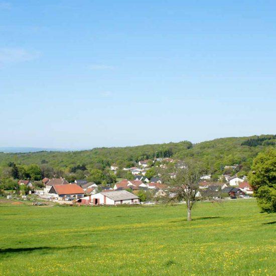 vue du village de tallenay