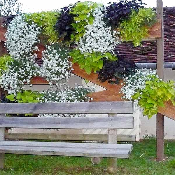 Tallenay village fleuri 05