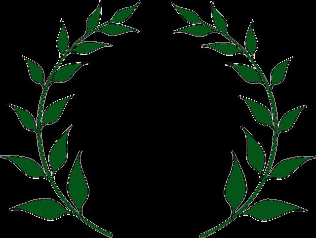 Prix jeune : «Les chemins de l'honneur»