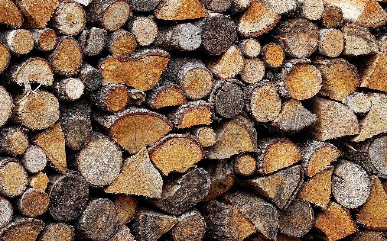 Vente de bois de la forêt communale
